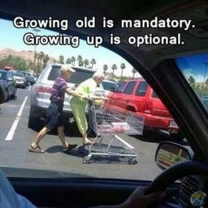 Growing old is mandatory, growing up is optional.