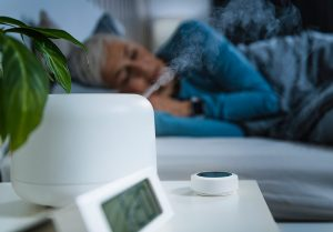 smart home with humidifier
